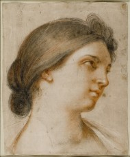 Headsketch of a Lady